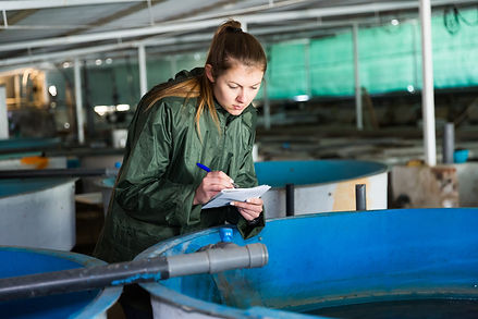 Woman owner of trout farm checking reser
