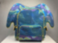 Cheap - Electronic - Backpack - Prototype - LED - Wisconsin - WI