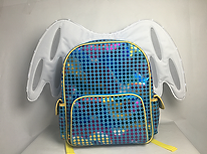 Dirt Cheap Prototypes  - Electronic - Backpack - Prototype - LED - Wisconsin - WI
