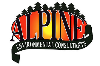 alpine_logo_FINAL.jpg