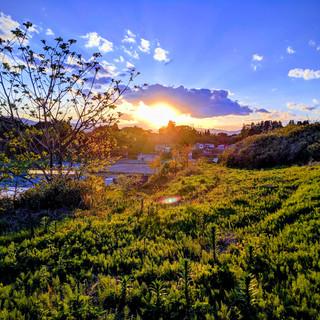 みがく農場の夕日