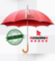 P3 brand umbrella_edited.jpg