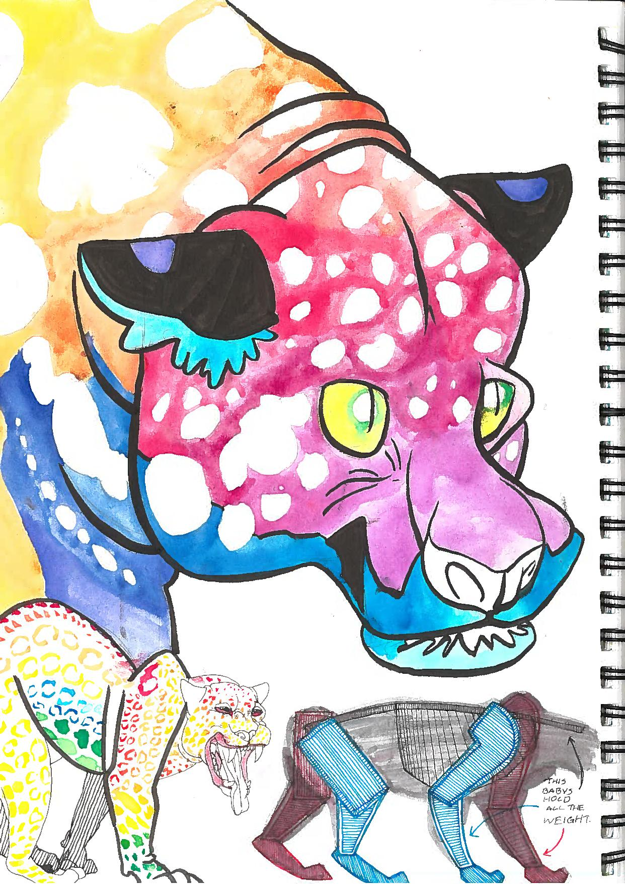 Jaguar sketchbook page