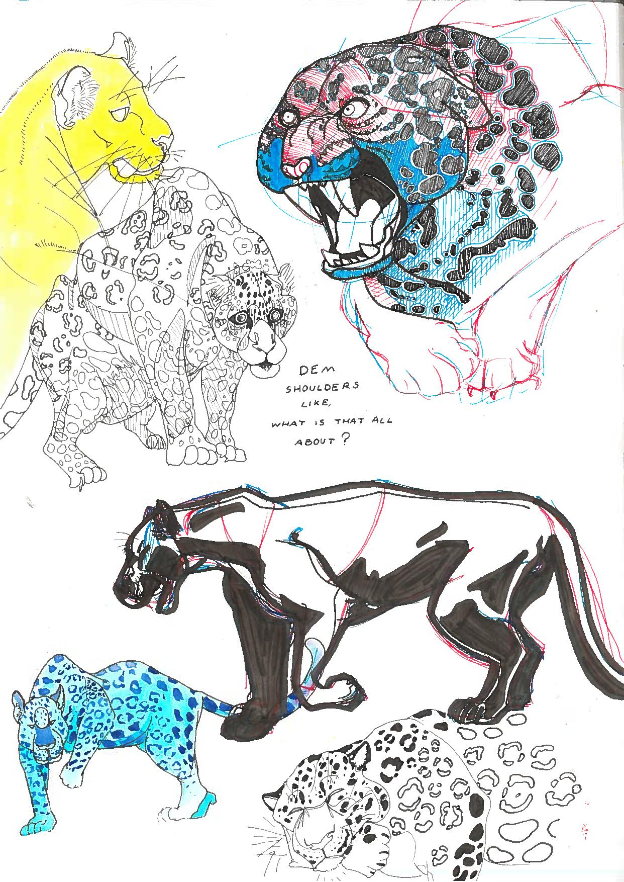 Jaguars and Big Cats Sketchbook Page