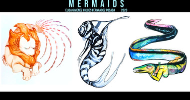 Mermaid concepts