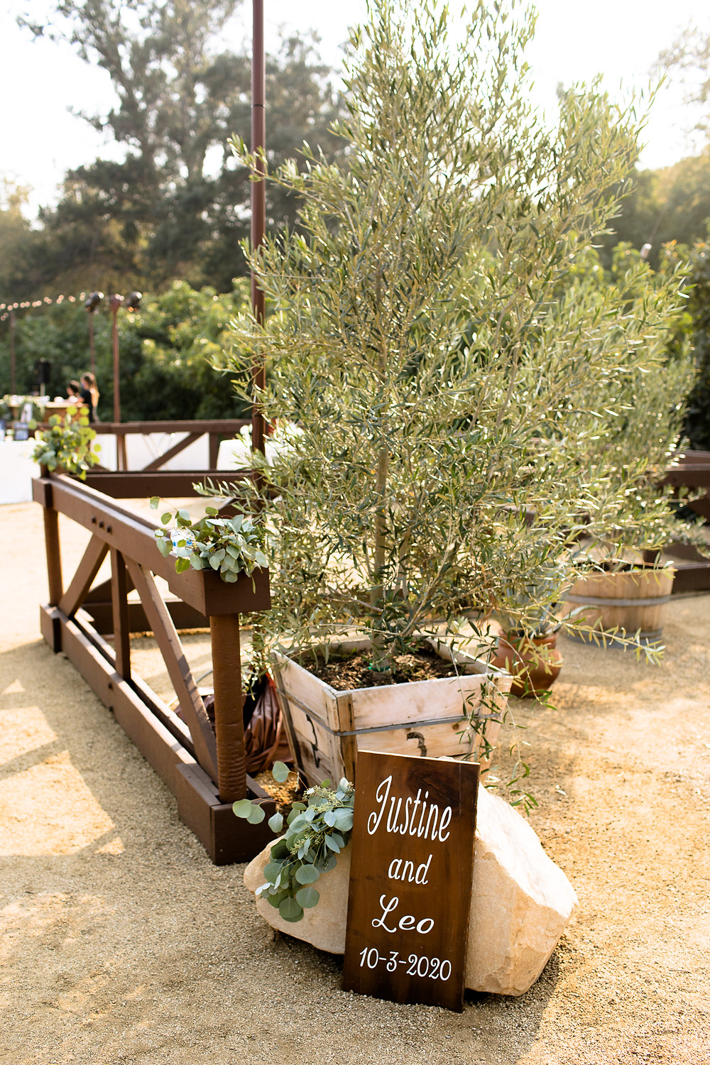 backyard wedding reception welcome sign in front of an olive tree in santa barbara, california