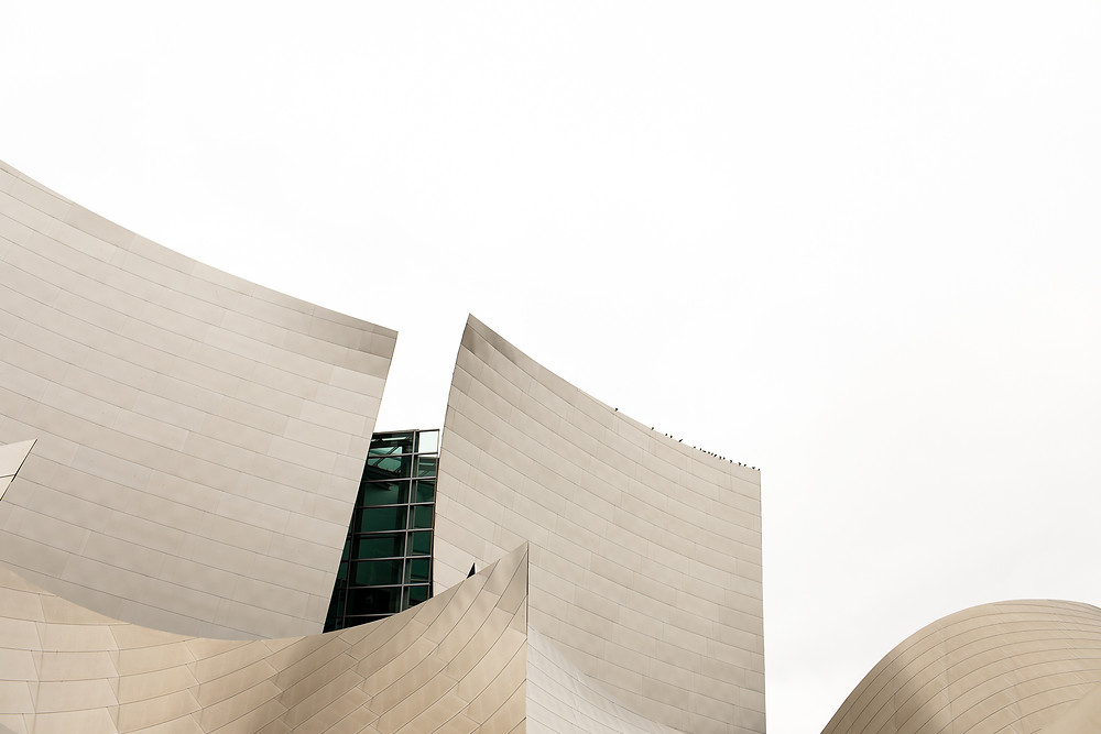 walt disney concert hall with birds sitting on the top