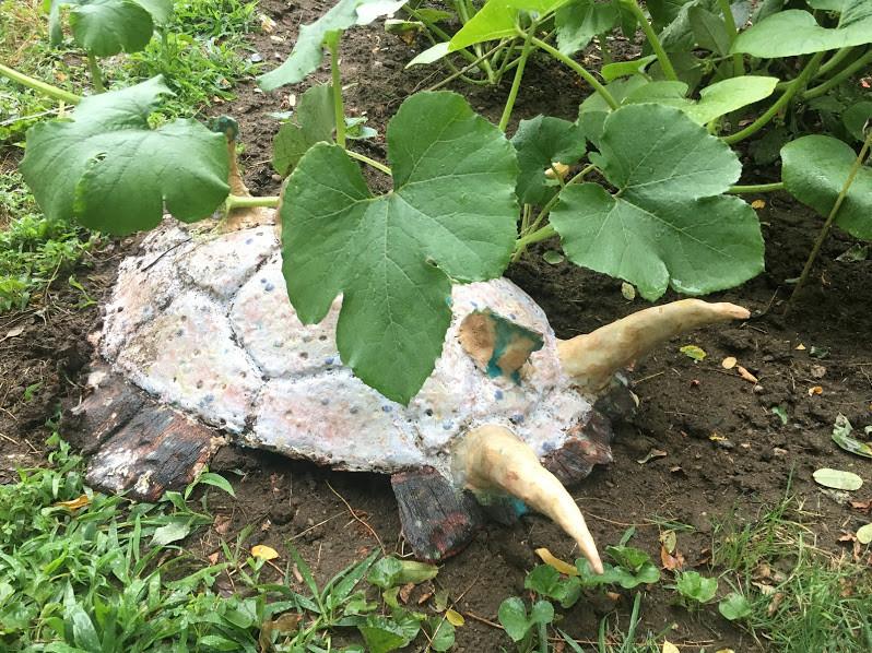Mollusk in the Garden.JPG
