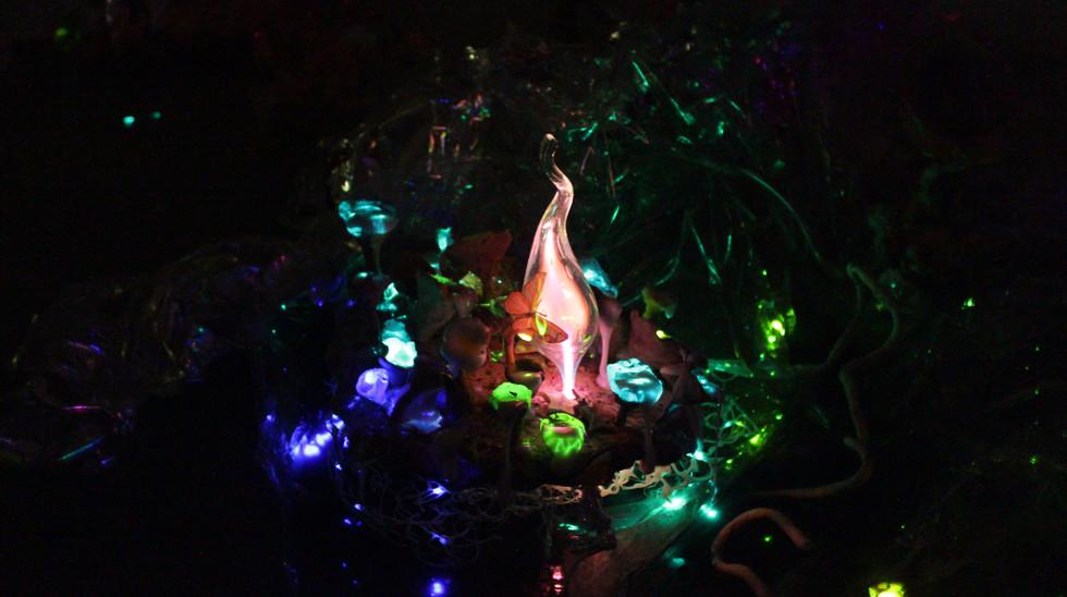 Garden of Silica (Night) .JPG