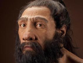 Hace 130 mil años habrían llegado los primeros humanos