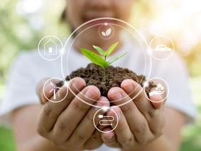 2020 en materia ambiental marcará una nueva ruta para los gobiernos locales