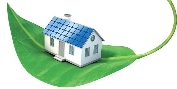 EcoSabana, Sustentabilidad, Ecología, Sostenible