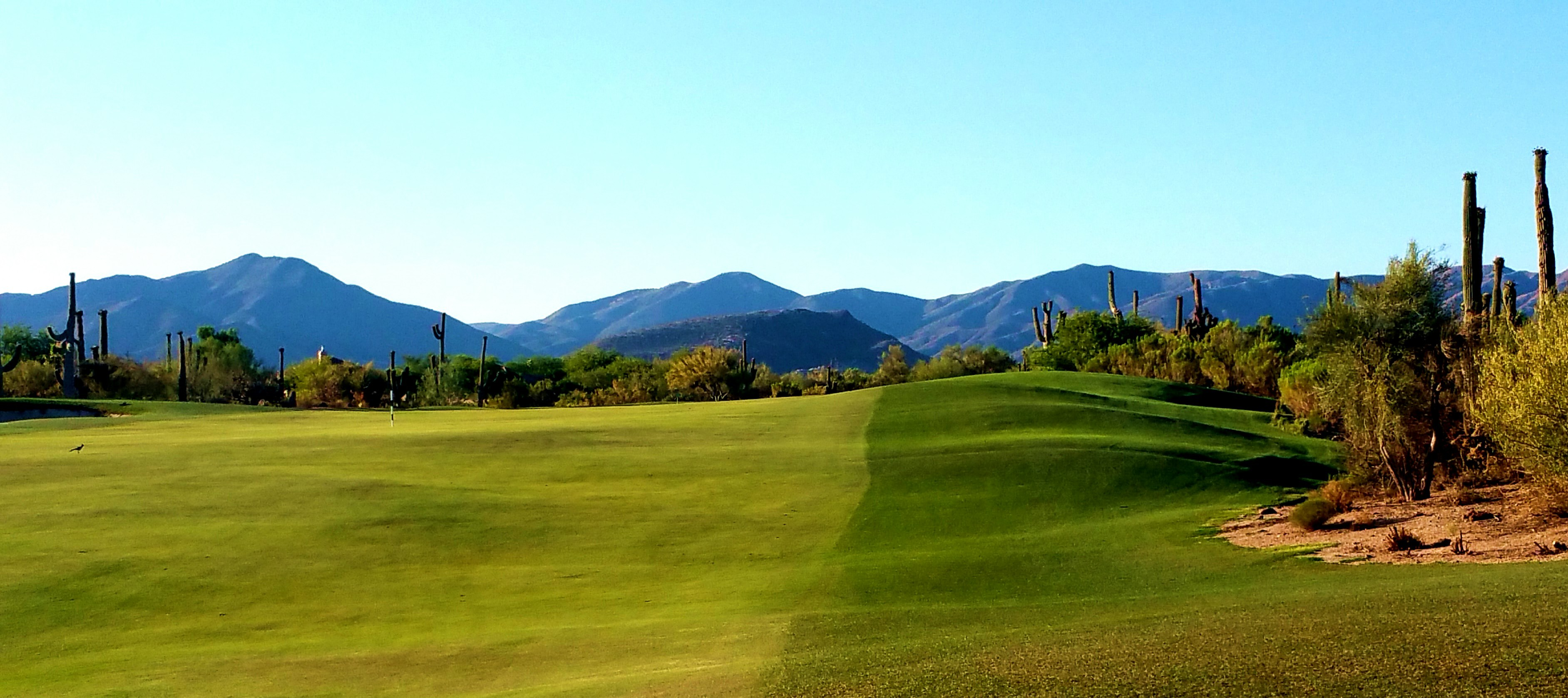 The Green at the Fairways