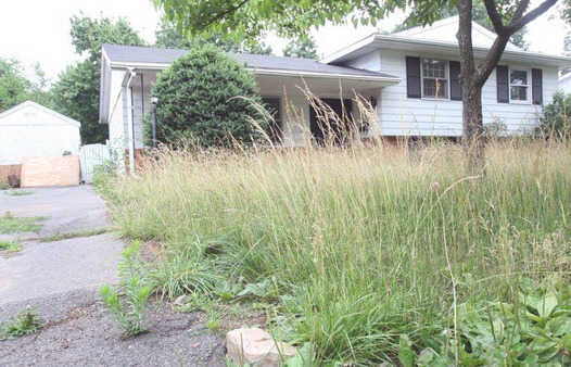 Distressed Property Needing Sold