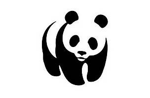 WWF: How PR can help gain three times more conversions and cut ad spend by half