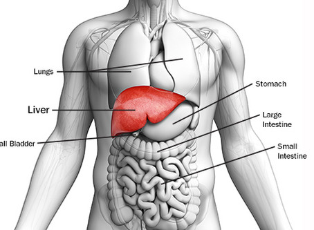 Taking Medications? Cleanse Liver and Kidneys