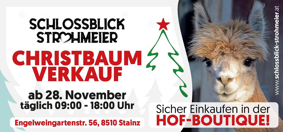 Schlossblick_Plakat_Web_1920x1080.jpg