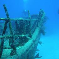 diving-1655734_1920.jpg