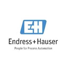 Endress+Hauser.jpg