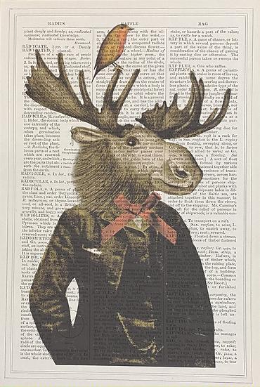 Moose Gentleman