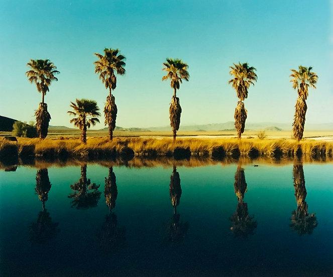 ZZYZX RESORT POOL II, SODA DRY LAKE, CALIFORNIA, 2002