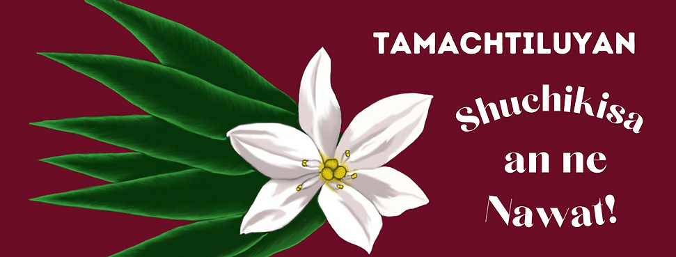 FB Cover Tamachtiluyan SANN.png