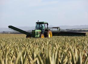 Gladstone Land Farmland REIT