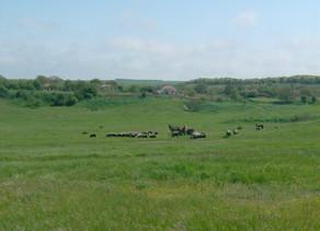 Advance Terrafund Farmland REIT