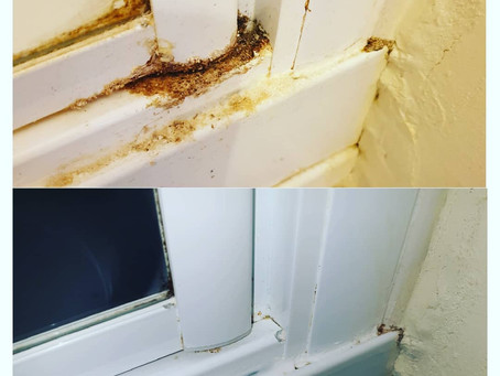 Professional Cleaning in Telford, Shrewsbury & Wolverhampton
