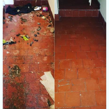 Specialist cleaners Telford.jpg