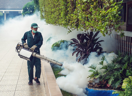 NEW!!! Professional BIO-Fogging! Touchless Disinfection Technology
