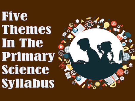Knowing The Five Themes In The Primary Science Syllabus