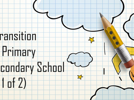 The Transition From Primary To Secondary School (Part 1)