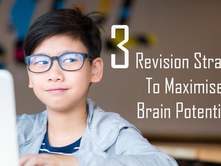 3 Revision Strategies To Maximise Brain Potential
