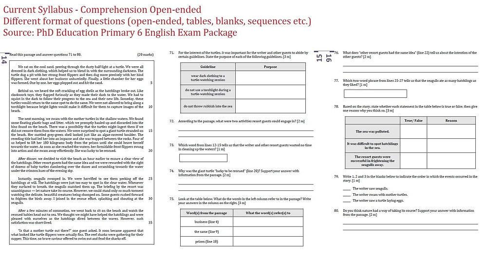 English PSLE Questions