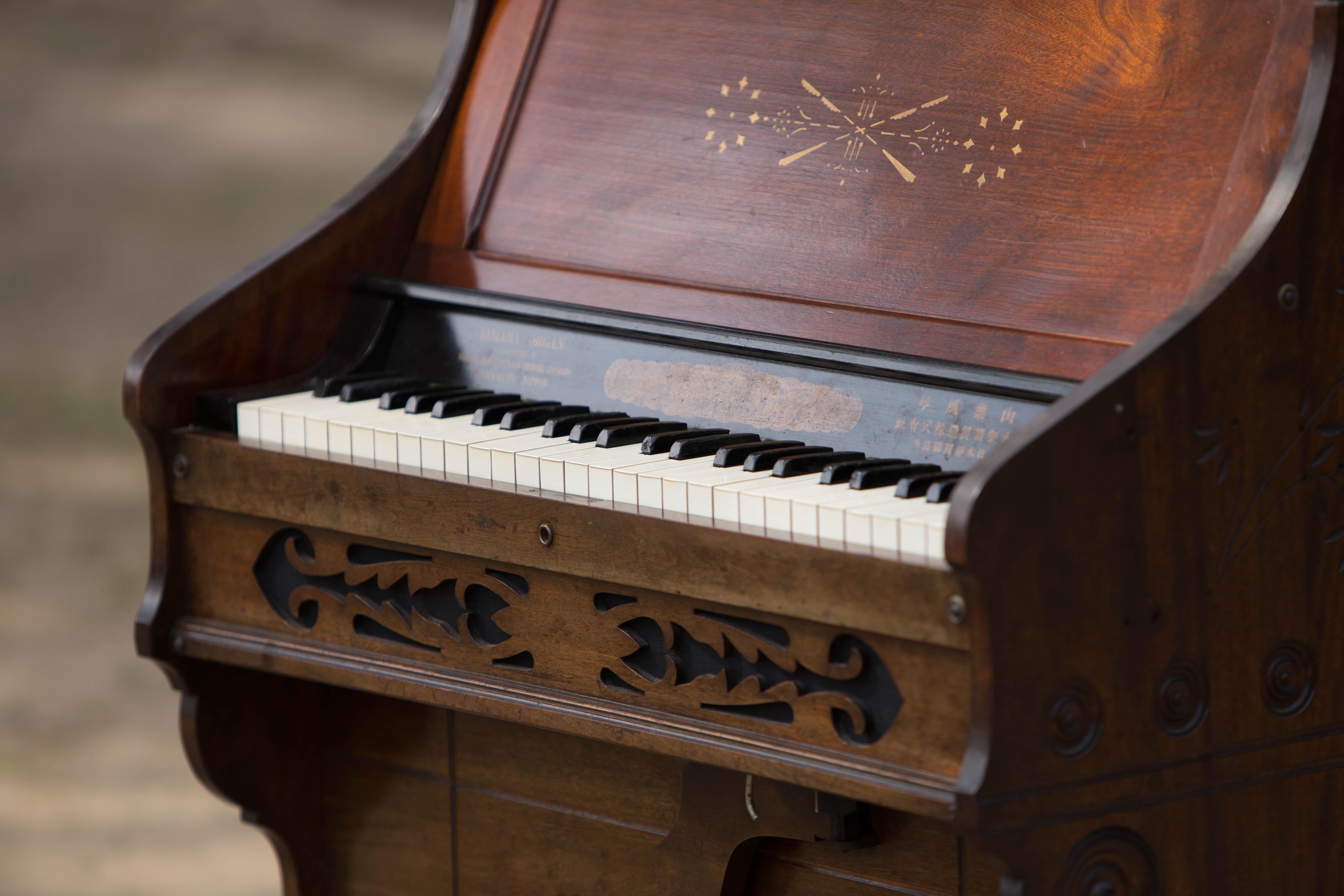 organ_0320