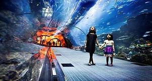 Aqua Park & Lost Chamber Aquarium Dubai