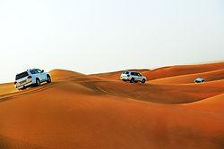 Desert safari dubai book online
