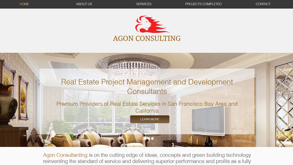 Agon Consulting