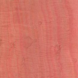 Pink Ivory.jpg
