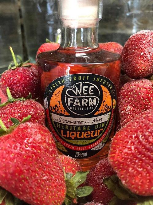 Summer Fruits Heritage Gin Liqueurs