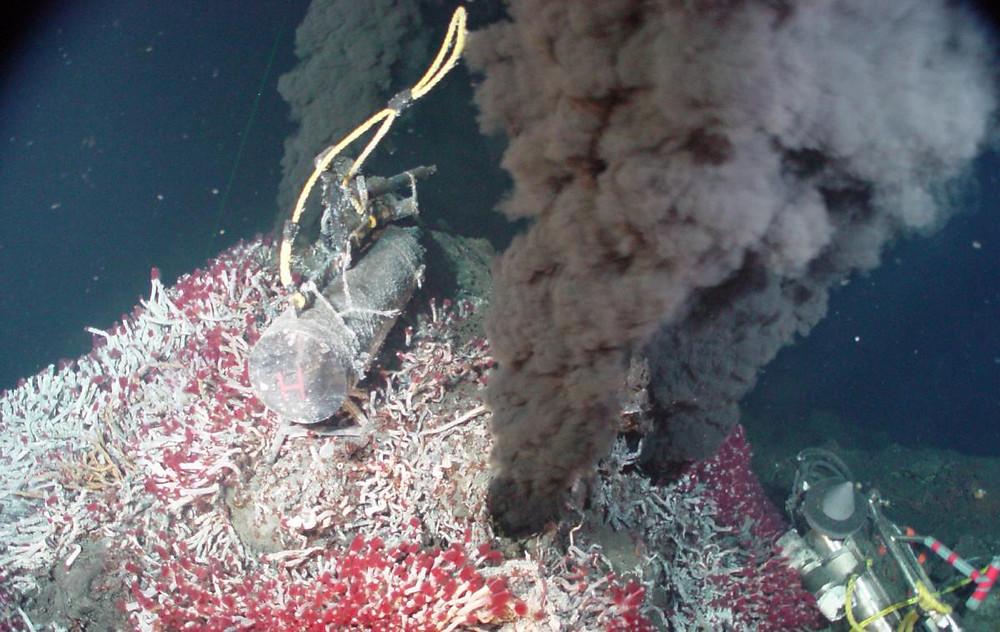 deep sea vents pharmacological applications