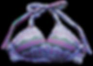 bikini_detail2.png