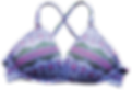 bikini_detail1.png