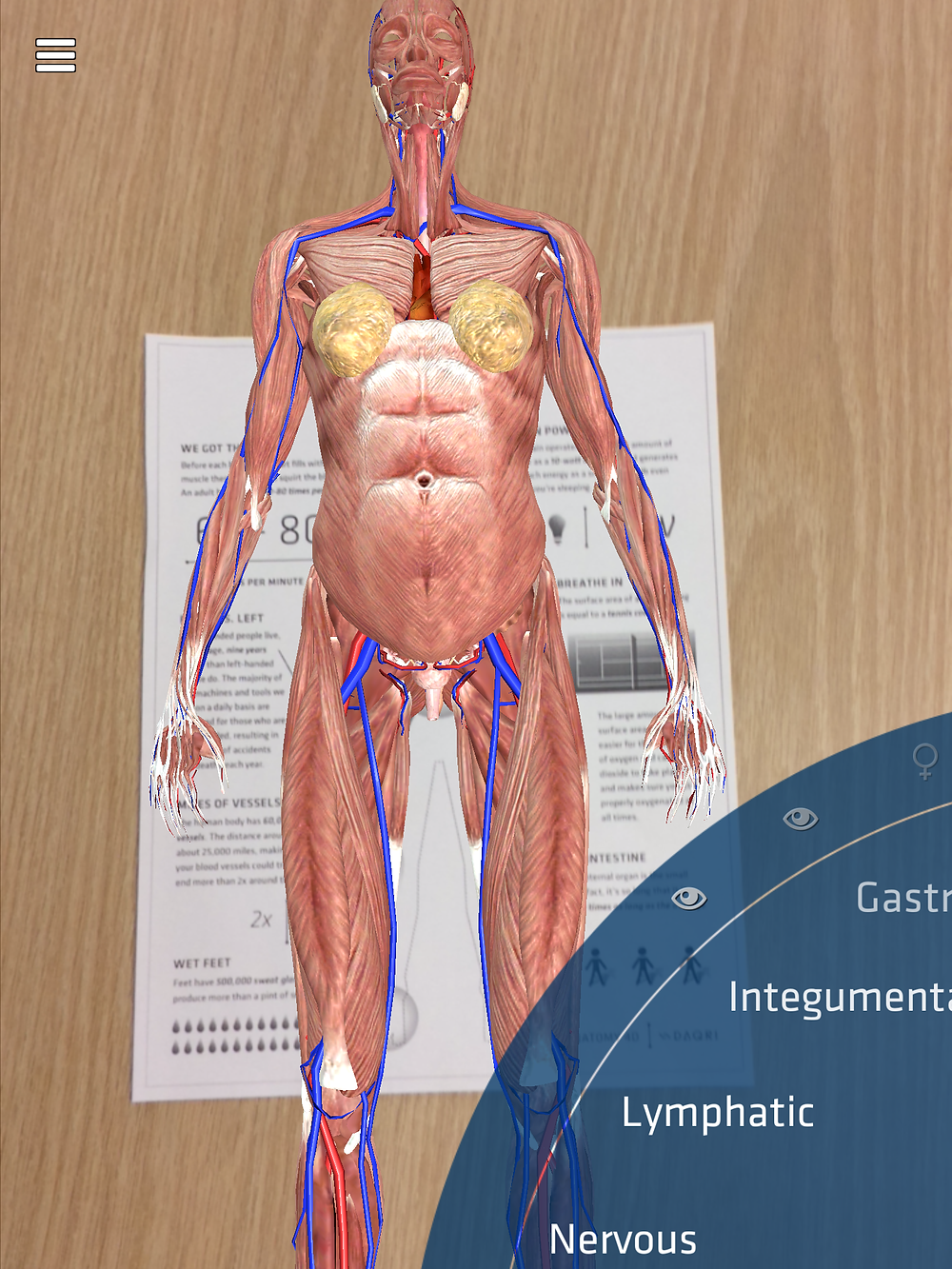 Anatomy 4D DAQRI