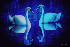 Twilight Dance of the Swans