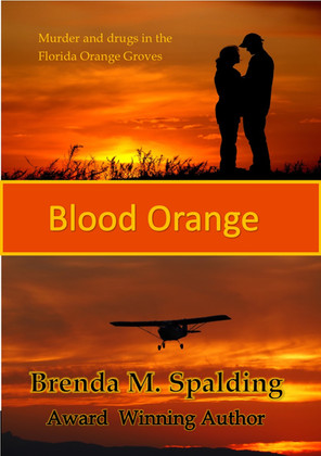 47424887-84930628-blood-orange-cover.jpg