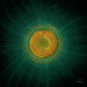 Fractal Sunflower