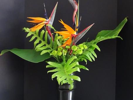 Bamboo & Blooms - Virtual Exhibition Presented by Sarasota Chapter #115 Ikebana International