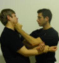 American Wing Chun Organization
